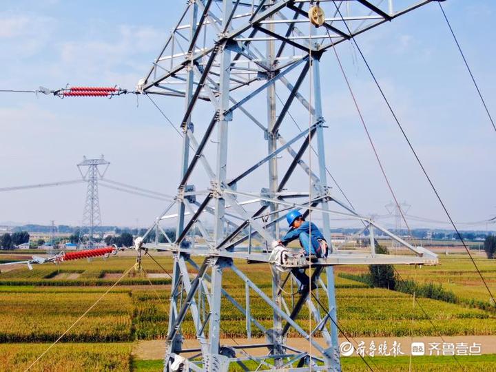 国网宁阳县供电公司抢抓黄金施工期 项目建设加速跑