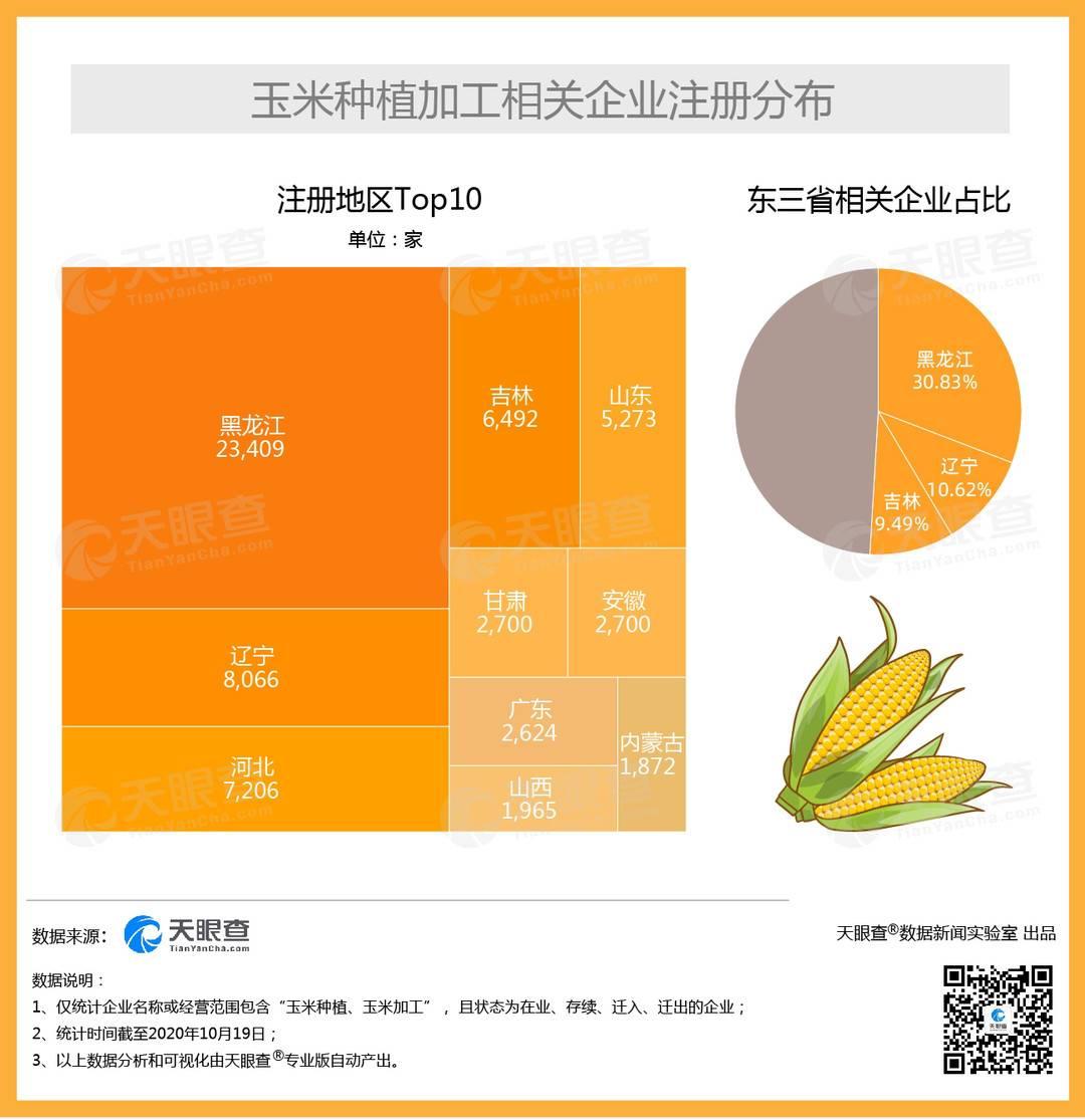 """我国过半""""玉米种植加工""""企业注册于东三省"""