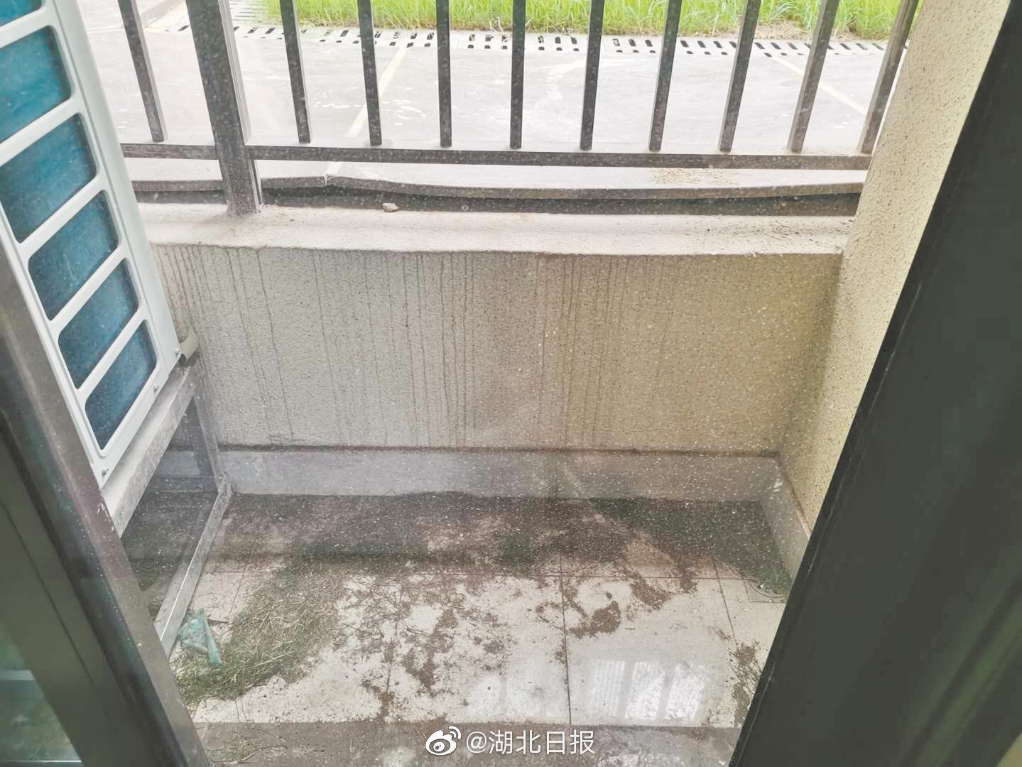 交房后发现阳台比小区路面低一截 业主吐槽花400万买套地下室