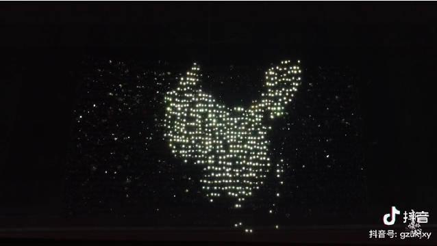 贵州大学科技学院新生千人灯光秀花式表白祖国