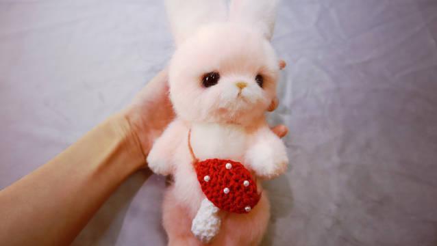 兔兔辣么可爱,不要吃兔兔啦, 一起做一个可好?