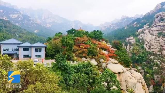 航拍崂山巨峰红枫绿树 十月的青岛最灿烂