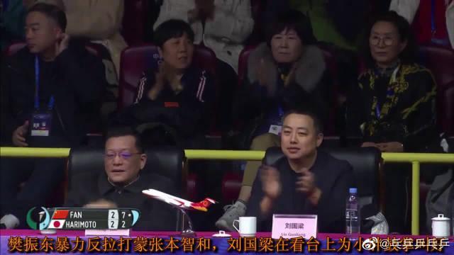 樊振东暴力反拉打蒙张本智和,刘国梁在看台上为小胖鼓掌叫好