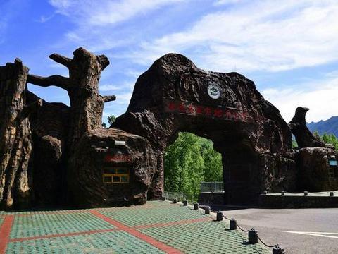 """辽宁一公园走红,距本溪市区约30公里,上亿年的""""树""""坚硬如化石"""