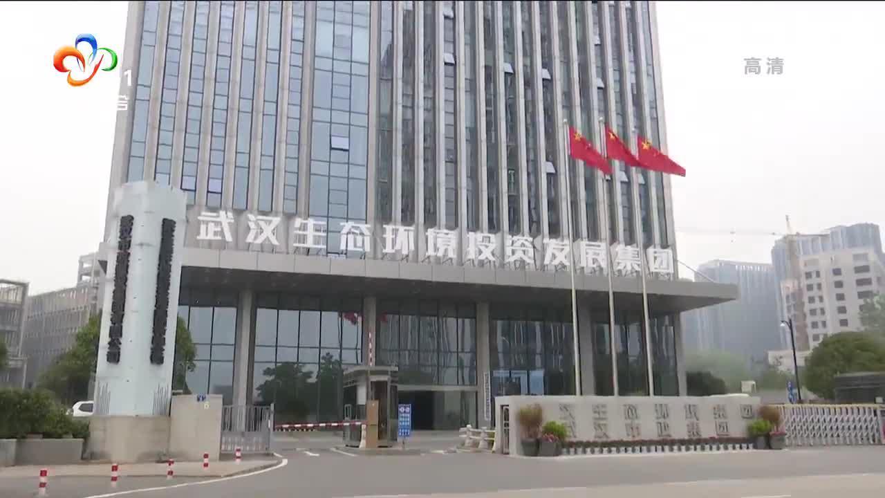 武汉生态环境投资发展集团揭牌