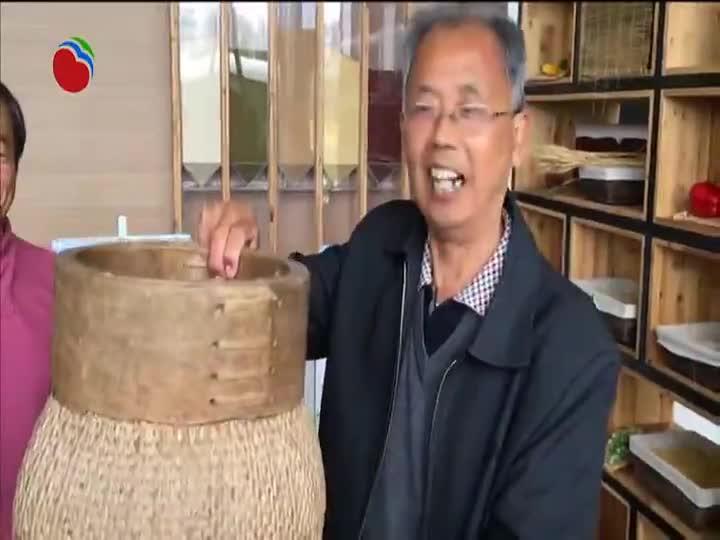 罗泾镇道德模范和乡贤代表参观乡村振兴成果