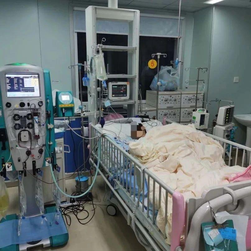 警惕!在家吃了一盘炒鱿鱼,11岁男孩被送进ICU!还可能终身接受透析!