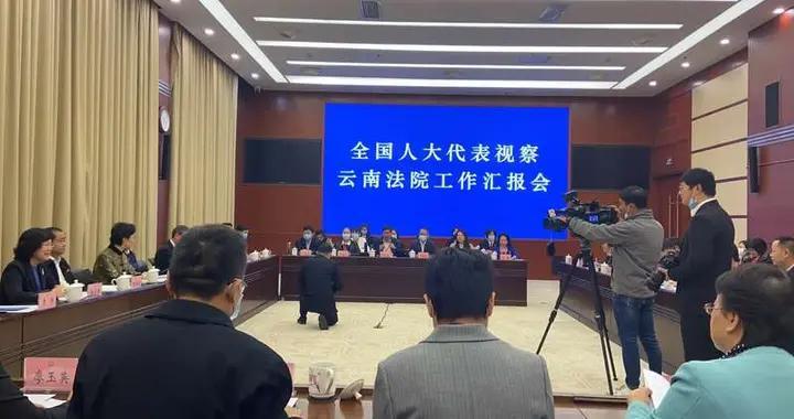 部分全国人大代表调研云南法院工作