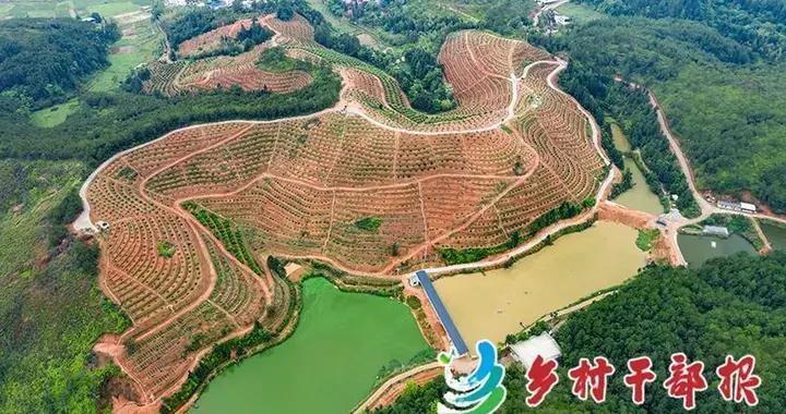 动态 | 福建省上杭县探索建立村财发展基金,破解村集体经济发展瓶颈