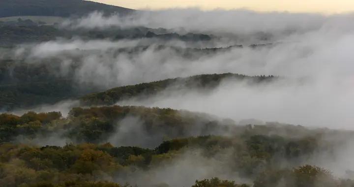 这是仙境啊!匈牙利浓雾笼罩如梦亦幻