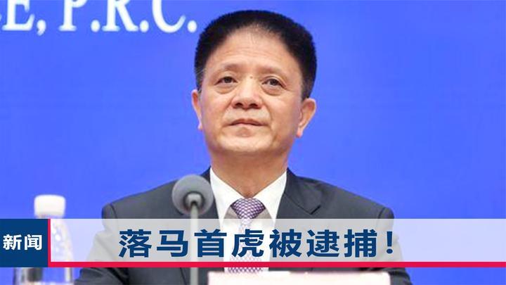 6个月前官宣落马,2020年首虎张志南被逮捕,在疫情期间敷衍应付