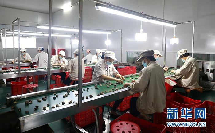 湖北襄阳剩余贫困人口578户将于11月底完成脱贫验收