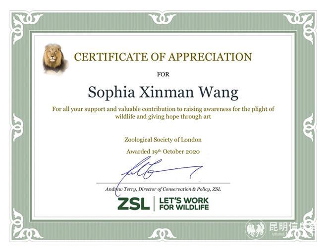 云南女艺术家王馨曼获ZSL英国伦敦动物学会感谢证书