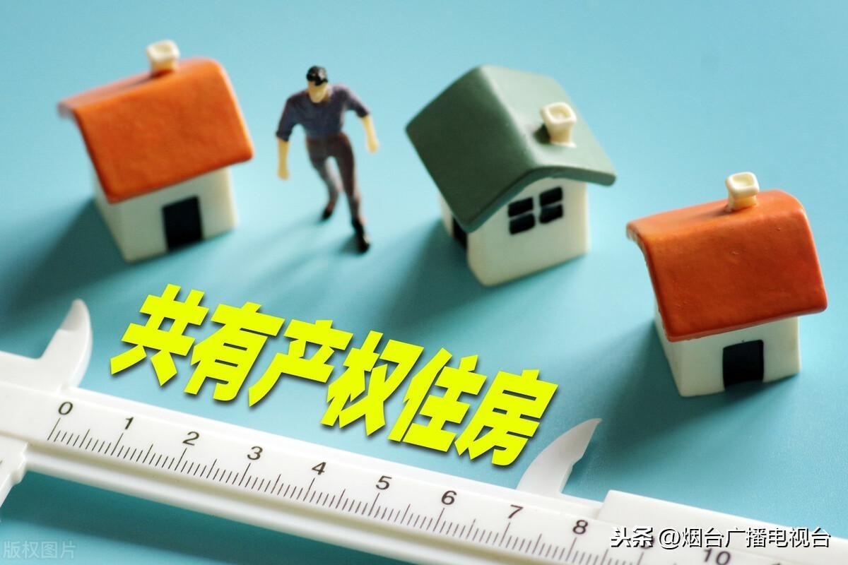 2020年度市中心区共有产权住房申请公告及说明