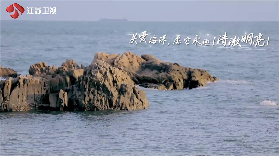 """防晒霜危害海底生物?捡贝壳破坏生态?张紫宁秦奋携手""""守护蔚蓝家园"""""""