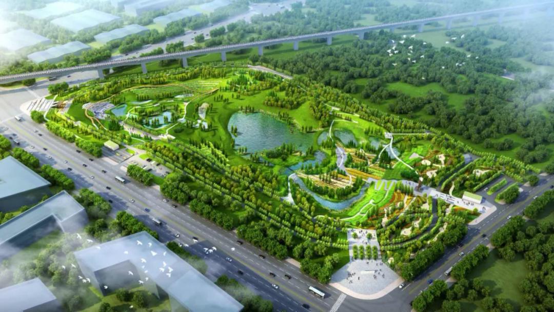 新城大街湿地工程及园区内道路建设最新进展