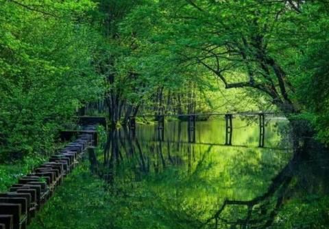 """古徽州最""""富有""""的村子,被大自然包围,让人流连忘返"""
