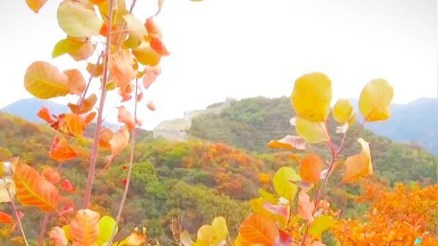 北京秋天去哪看红叶?八达岭森林公园是个好选择!