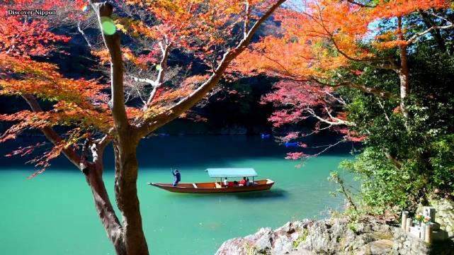 Discover Nippon新鲜出品~ 继春天在线赏完樱花之后……