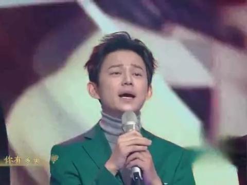 何炅、汪涵率领群星合唱《你有多美》,致敬一线医护人员!