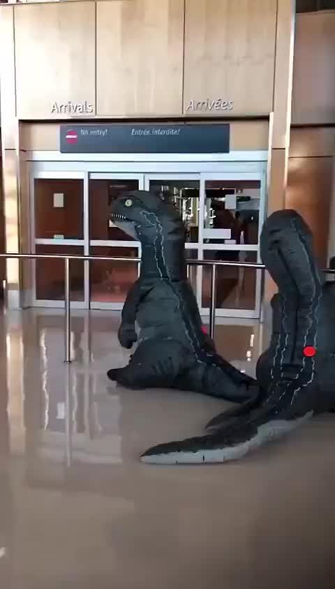 加拿大的维多利亚国际机场里……