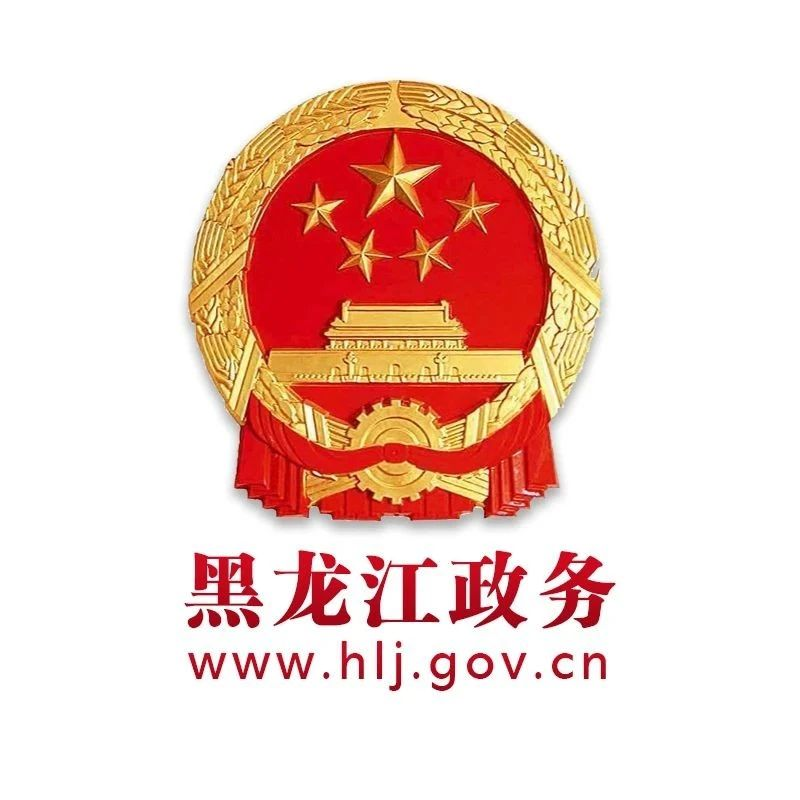 黑龙江省人民政府办公厅关于印发黑龙江省水上搜救应急预案的通知