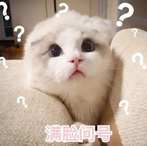 提醒!郑州高速收费又有新变化!豫V号牌车辆何时能免费?