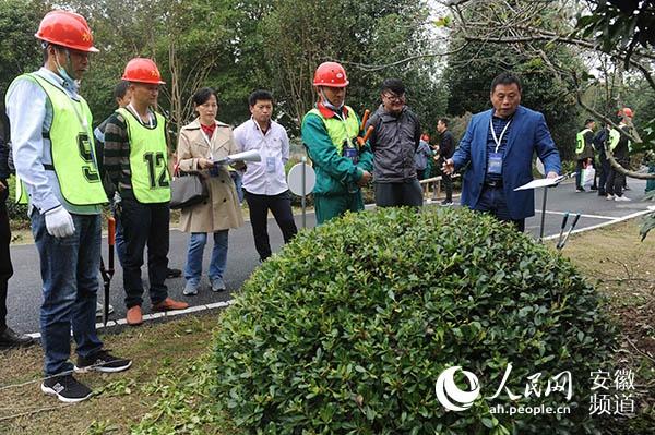 安徽省举办首届风景园林行业职业技能大赛