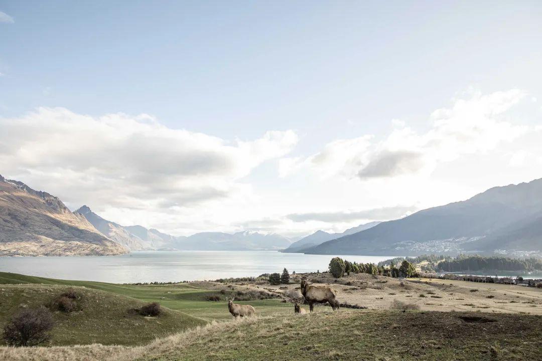 时隔11年,《指环王》取景地重新对游客开放