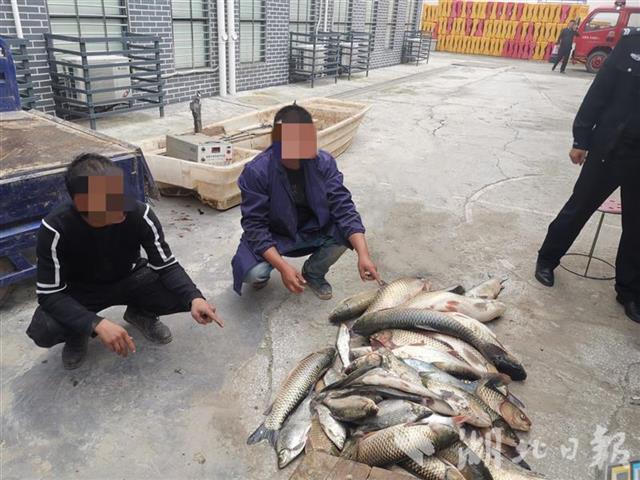 非法捕捞野生鱼类100多公斤,枝江两男子被抓获