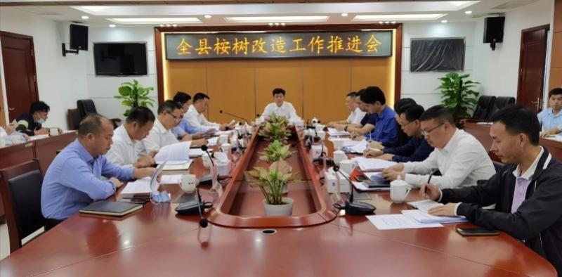 龙门县将用8年时间改造54.58万亩桉树林