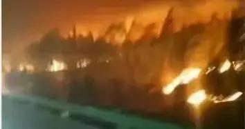 呼和浩特20日突发两起火灾,上百亩玉米地被烧