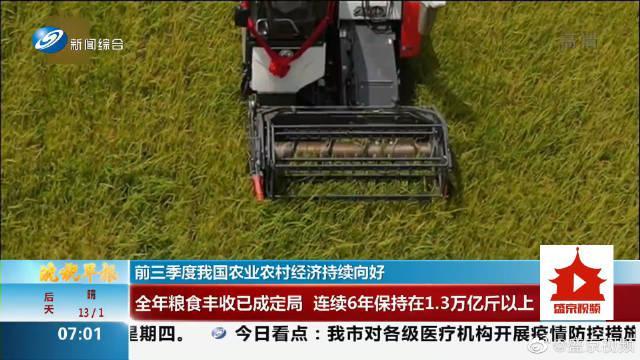 前三季度我国农业农村经济持续向好 全年粮食丰收已成定局