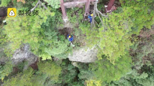 湖南张家界志愿者在悬崖绝壁捡垃圾:捡拾难度很大……