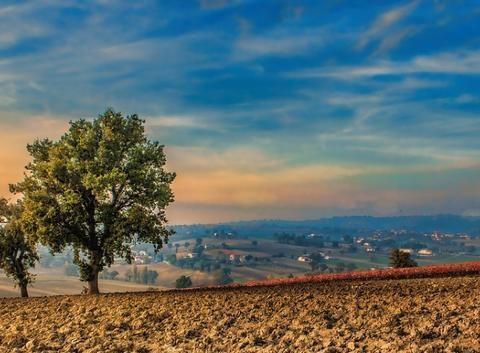 不同施肥和保水措施对油茶土壤氧化亚氮排放的影响