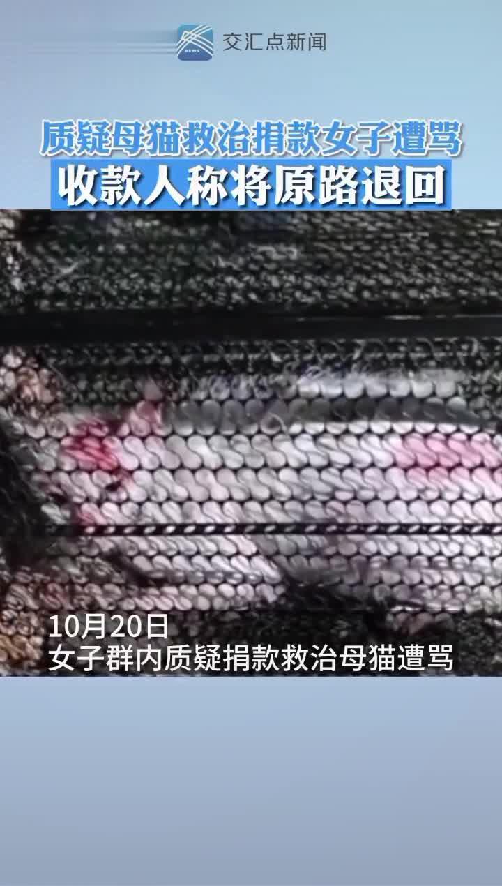 收款人称将原路退还 #太原一男子用开水浇怀孕母猫