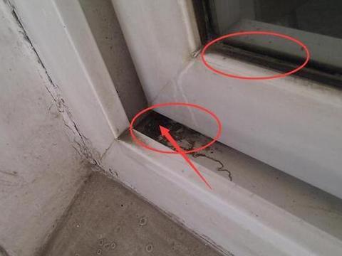 门窗缝隙太脏难清算,老阿姨教我一个清洁妙招,清算污垢很给力