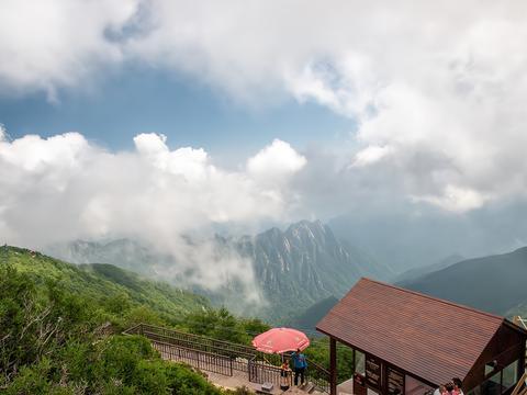 陕西宝鸡藏着一处秘境,海拔最高的国家森林公园,非常值得一去
