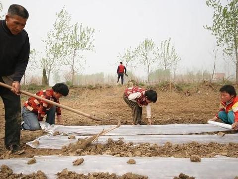 都说农民很苦很累,可大多数农民为何不肯放弃农村生活?