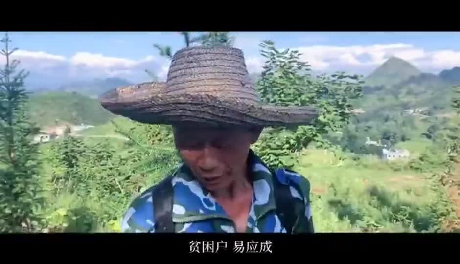 花椒树成了全村的希望 村民唱起花椒歌