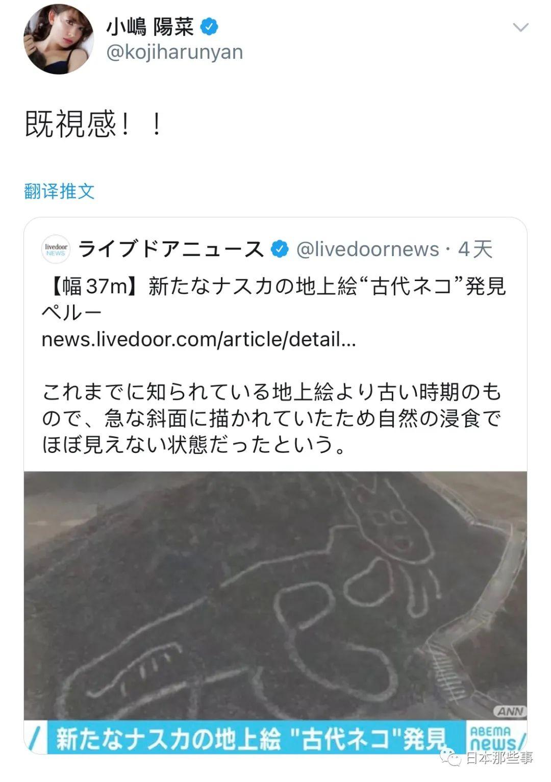 画风跟现代地画类似 日媒讥讽小嶋阳菜曾经2200岁(图6)