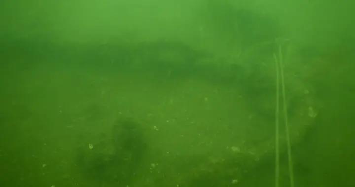 青岛胶州湾水下考古发现1处一战时期大型沉舰遗址