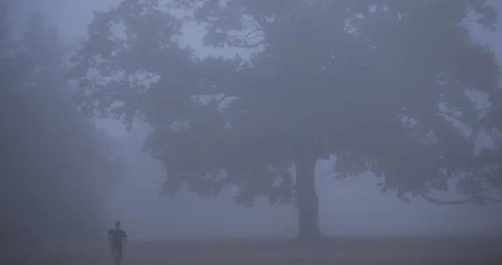 美国马萨诸塞州遭浓雾笼罩 伸手不见五指