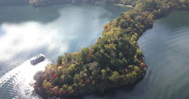 日本栃木县秋意浓 湖心小岛层林尽染