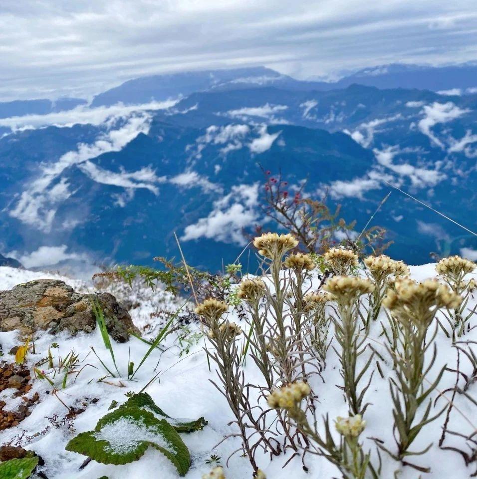 【行摄云南】昭通大山包迎来降雪 宛如水墨画般美丽