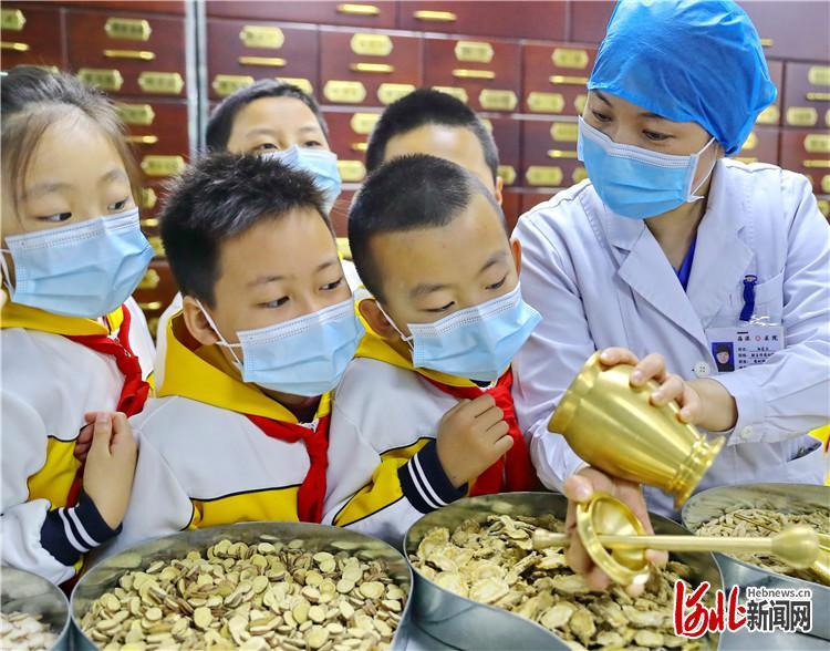 河北:体验中医文化 感受中医魅力