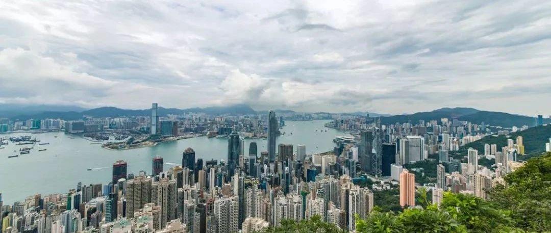为什么,普洱茶在香港这么火?
