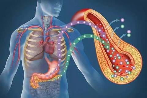 全球医报道:美国Whipple手术可使胰腺癌患者五年生存率高达25%