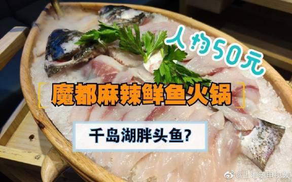 千岛湖胖头鱼38元一斤,人均50元打卡魔都首家网红