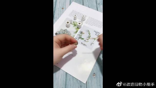 你见过这么小的卫生纸吗?太萌了!
